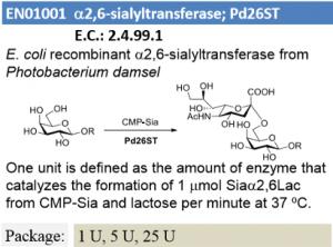 α-2,6-sialyltransferase; Pd26ST