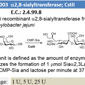 α-2,3/8-sialyltransferase; CstII