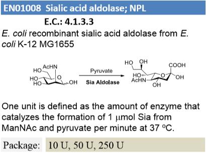 Sialic Acid Aldolase