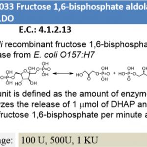 Fructose 1,6-bisphosphate aldolase (100U)