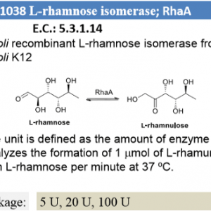 L-rhamnose isomerase ; RhaA