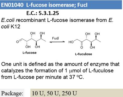 L-fucose isomerase ; Fucl