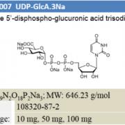 UDP-GlcA