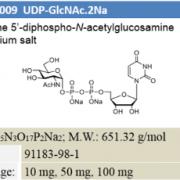 UDP-GlcNAc