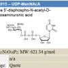 UDP-ManNacA
